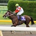 Photos: [140608東京11R安田記念]ダノンシャーク「ぁぁぁぁ…馬場乾いてたらもっと切れてたよ~」