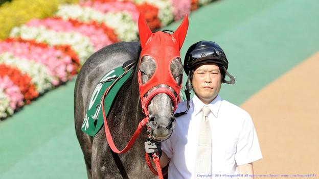 Photos: [140615東京11RエプソムC]アーデント「見ない方がいいね、見ない方がいい」