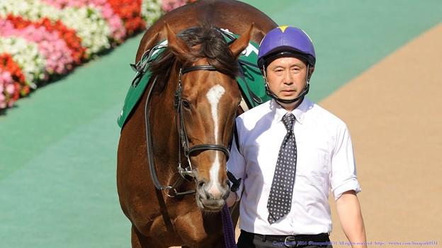 Photos: [140615東京11RエプソムC]?ゴールデンナンバーちゃん[栗]「ずいぶんやさぐれた男が多いわね~…」