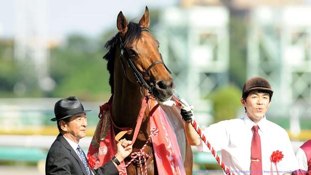 [140615東京11RエプソムC]ディサイファ「やっぱり、重賞勝つって誇らしいものですね」
