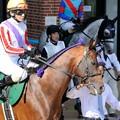 Photos: [140622函館11R函館SS]セイコーライコウ&柴田善「紫がアクセントです」