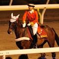 Photos: [140625大井12R帝王賞]ボンちゃん「みんな、誘導馬デビュー1周年の祝福してくれてるのね~ありがとうございま~す」