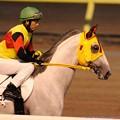 Photos: [140625大井11Rパール賞]ケイティードラゴン&岡田大「父ちゃんスピードワールドなんですけど、今の人たちはあまり知らないでしょうね…」 #tck2014