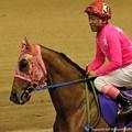 Photos: [140702川崎11RスパーキングレディーC]トウホクビジン&内田利「ピンクさん、上機嫌ね」