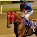 Photos: [140702川崎11RスパーキングレディーC]レッドクラウディア&森泰斗「馬場出てきたら少しだけ気分が晴れてきたわ」