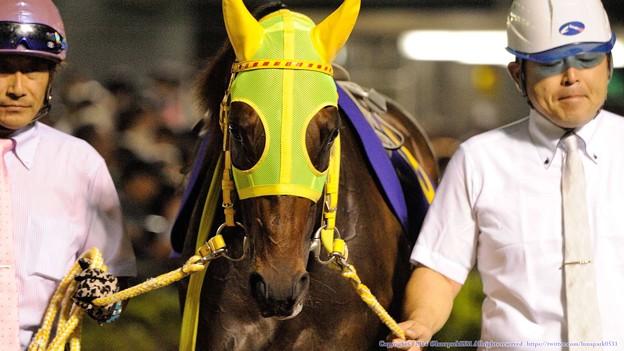 [140702川崎11RスパーキングレディーC]マイネエレーナ「中央のお馬さんたちに一泡吹かせたいわ…」