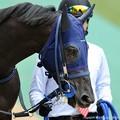 Photos: [140629東京11RパラダイスS]?マイネルディアベル「古馬になるって大変なんだね…」