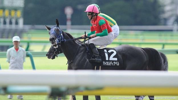 [140629東京11RパラダイスS]マイネルディアベル「ミトラさんが勝つところをミトラんかったんですかwww」