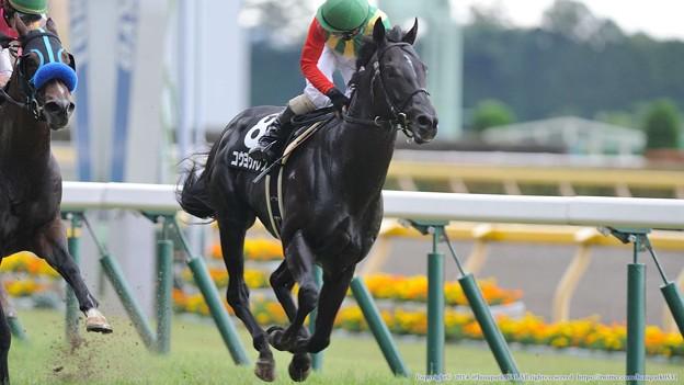 [140629東京11RパラダイスS]コウヨウアレスの善臣先生「どっち~?」←すいません、完全にアレスが勝ったと思い込んでおり、ミトラの写真がありません