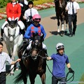 Photos: [140511東京10RブリリアントS]ドコフクカゼ「川田さん、まあまあ気楽に乗ってくださいな」