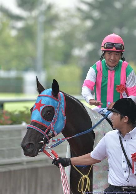 [140727中京11R中京記念]サダムパテック「今日のペタペタは格別です」 #ジロリ馬