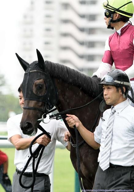 [140727中京5R新馬]ニューエディション&浜中「うーん・・・プレッシャーっていうのかなこれ…」