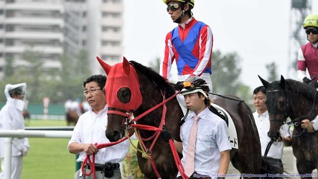 Photos: [140727中京5R新馬]トーホウバード&和田「大丈夫、落ち着いてます、ぼくは落ち着いてますよ」