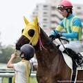 Photos: [140727中京5R新馬]クラウンフレイム&国分恭「はいはい、こっから走ればいいんですね」