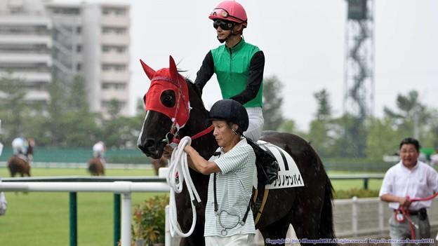 [140727中京5R新馬]クリノケンパイ&太宰「うわー、結構びっくりしてます」