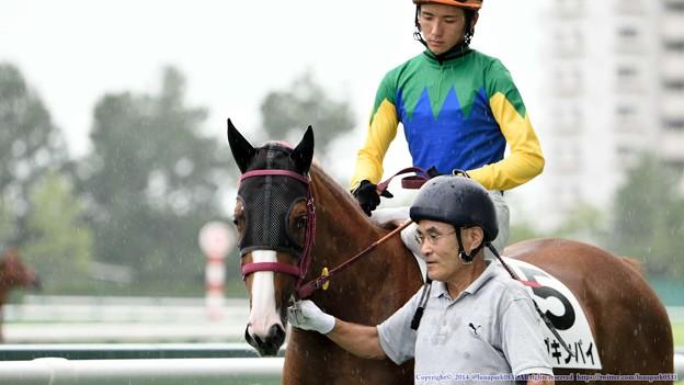 [140727中京5R新馬]パンプキンパイ&義「パイは雨に濡れちゃダメなのよね…」