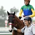 Photos: [140727中京5R新馬]パンプキンパイ&義「パイは雨に濡れちゃダメなのよね…」