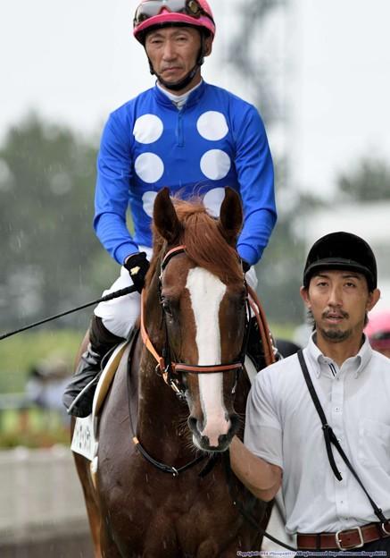 [140727中京5R新馬]タイセイメテオ&蛯名「こっちは厳しい顔されてます…」