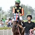 Photos: [140727中京5R新馬]ヒデノプラチナ&鮫島「あれ?アキュート先輩が言ってた砂じゃないぞ?」