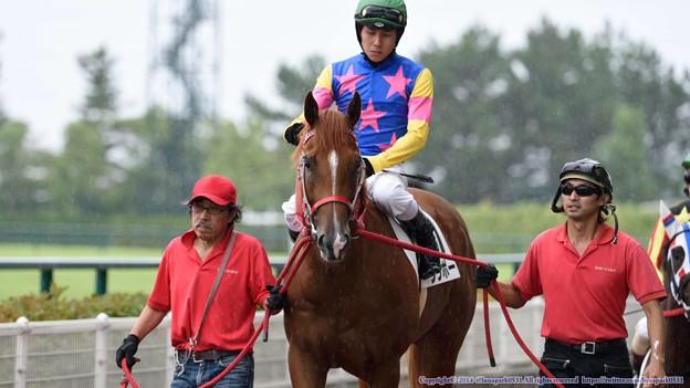 [140727中京5R新馬]ウリボー&中井「少しは馬らしく見えてきたかな?」