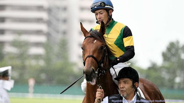 [140727中京5R新馬]カゼノゴトク&柴山「あの芝食べられるの!?」厩務員さん・柴山「ダーメです」