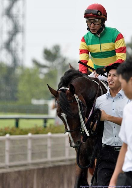 [140727中京5R新馬]トウケイリニア&川島「やるよ・・・ぼくはやるよ…」