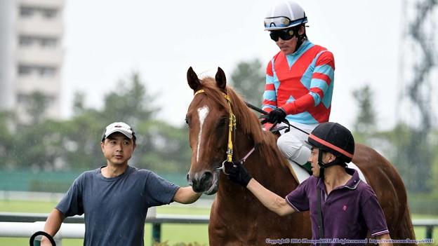 [140727中京5R新馬]カラトラバ&小牧「??なんでさっきからぼくのことそんなに見られてるんだろう??」