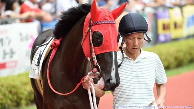 [140727中京5R新馬]?クリノケンパイ「競馬場がどんなもんかよくわからないので、とりあえず帰ってからのご飯の想像だけしてます(ペロリ」 #ジロリ馬