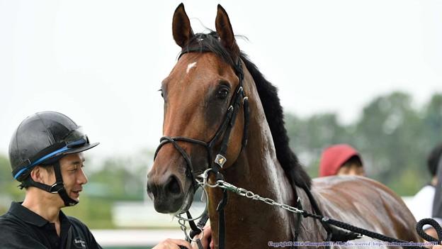 [140727中京5R新馬]ロンバルディア「勝ってのもいいものですな」