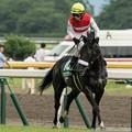 Photos: [140817新潟11R関屋記念]ショウナンアチーヴ「?」柴田善「返し馬のときは後方確認怠っちゃダメだよ~」 #ジロリ馬
