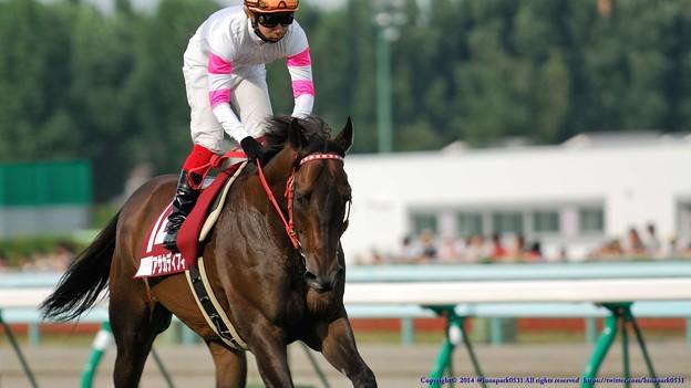 [070902札幌9R札幌記念]アサカディフィート(池添)「長いこと競走馬やってるけど札幌ははじめてなんですよ」