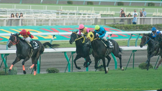 [080831札幌12R札幌スポニチ賞]デビルズコーナーが逃げこもうとするところオネストジョンが急追