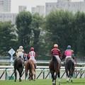Photos: 芝1500なので、入場後は一旦4角の方向に向かって~【140906札幌5R2歳新馬】
