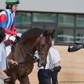 Photos: ダイトウキョウ(福永)「三浦くん、ものすげえ笑顔だぜ…こっちゃ緊張してるのに」【140906札幌5R2歳新馬】