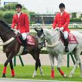 Photos: 0522_バセロット「新馬戦ってドキドキするもんかな~」エーシンエスヴィー「憶えてねえっす~」【130721函館5R】