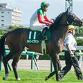 1140_ハッピースプリント(宮崎光)「中央のお馬さんも強いんだろうな~」【130721函館11R函館2歳S】