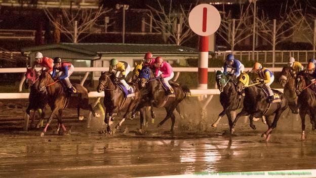 スタート直後。激しい先行争いも馬場で思い通りにいかない各馬。インペリアルマーチあたり滑りがち【141022大井11Rマイルグランプリ】