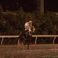 ネコイッチョクセン(繁田健)「返し馬に一直線だ!」【141022大井11Rマイルグランプリ】