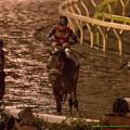トーセンアドミラル「連覇がどうのこうのではないっす…立て直します」グランディオーソ「重賞勝ちたいよー…」ジョーメテオ「まあ後ろからよく伸びた方よ」【141022大井11Rマイルグランプリ】