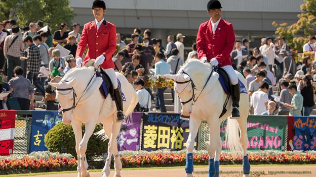 写真: シロベエ(←)「みんないっちゃったね~」ホワイトベッセル(→)「ぼくらはおとなしく歩いてればいいの~」【141026京都4R新馬】