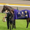 写真: スピルバーグ「お?こっちもですか、はい、あ、どうぞ」【141102東京11R天皇賞(秋)】