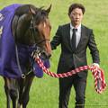 Photos: スピルバーグ「まだまだしばらくかかりそうですね、じっと待ちますよ」【141102東京11R天皇賞(秋)】
