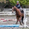 Photos: マイネルキッツ「騎手ちゃんも若いからね~、なってないんだよね~」←そこをしっかり教えてあげて!【141108根岸】