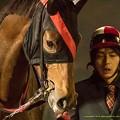 Photos: ルコンポゼ「ねえ、勝ち方教えて」引き馬さん「的場さんの言う通りにすればいいよ」【141112大井11Rハイセイコー記念】