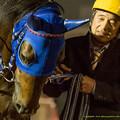 Photos: ラッキープリンス「うー…うー…」橋本さん「そんな意気込んだらダメだよ~」【141112大井11Rハイセイコー記念】