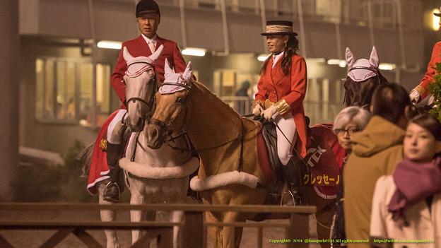 クレッセーノ先輩「あいつ、お馬さん撮るフリしてMXの女の子撮ってるよな」ナイキスターゲイザ「怪しいっすね」ボンネビルレコード「みえない」【141112大井11Rハイセイコー記念】 #ジロリ馬