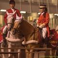 Photos: クレッセーノ先輩「あいつ、お馬さん撮るフリしてMXの女の子撮ってるよな」ナイキスターゲイザ「怪しいっすね」ボンネビルレコード「みえない」【141112大井11Rハイセイコー記念】 #ジロリ馬