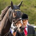 Photos: ?レッドリヴェール「実はローブさんみたいに蓋開けたら短距離馬だったとか言ってるんでしょ。余計なお世話よ」【141116京都11Rエリザベス女王杯】 #ジロリ馬