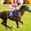 Photos: ヌーヴォレコルト(岩田)「腹を括るわ。とにかく牝馬女王に君臨するわよ」岩田「あいよー」【141116京都11Rエリザベス女王杯】