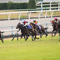 Photos: 100m、ヌーヴォレコルト必死に逃げるがラキシスが猛追【141116京都11Rエリザベス女王杯】